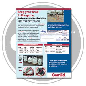 """Keep Your Head In The Game"" – ComEd and ABG Bulk Bags"